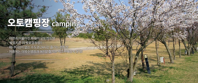 캠핑 이미지